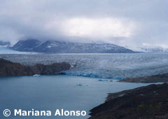 Panoramic View of Upsala Glacier