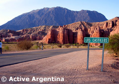 The formations of the Quebrada de las Conchas, the way to Cafayate