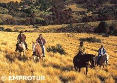 Cabalgata en Bariloche