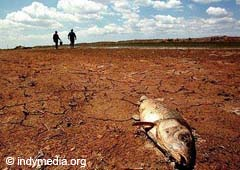 The droughts provoque food shortage