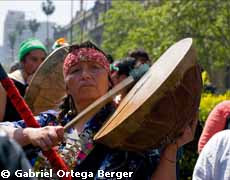 Mapuche singer with cultrun