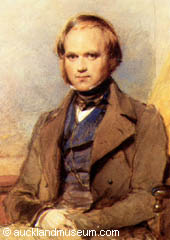 A portrait of Charles Darwin, before he became famous as the founder of a revolutionary scientific theory
