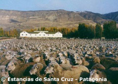 Tragic Patagonia: The Massacre of Estancia Anita