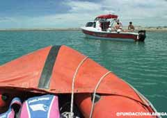 Barcos de Fundación Albenga en plena busqueda