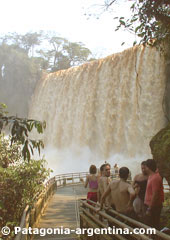 Iguazú Falls seen from the Lower Path