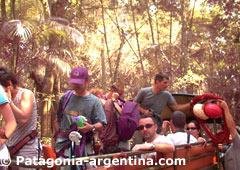 Iguazú Forest - Puerto Iguazú