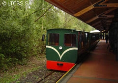 The Rainforest Ecological Train has a capacity of between 120 and 150 people