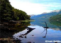 Vista en Camino de los 7 Lagos - Bariloche y San Martín de los Andes