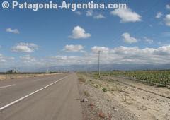 Camino Valle de Uco in Mendoza