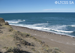 The coast of Punta Norte is one of the places whre the Orcas come for hunting