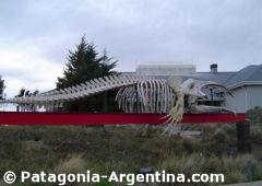 Esqueleto de ballena a la entrada del Ecocentro