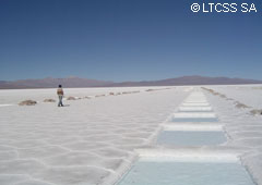 Salinas Grandes (Great Salt mines) - Jujuy