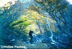 <!--:es-->Trekking de Otoño: Refugio Italia y Laguna Negra<!--:--><!--:en-->Fall trekking: Shelter Italia and Laguna Negra<!--:-->