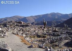 Ruinas de Tastil - Salta