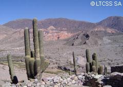 La Quebrada de Humahuaca constituía uno de los grandes caminos del inca.
