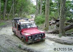 Pura aventura 4x4 por bosques y lagos