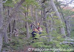 Trekking en sendero del P.N.Tierra del Fuego