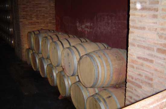 Caminhos do Vinho en Mendoza