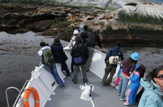 Tierra del Fuego: Finisterre