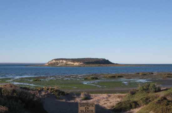 Puerto Madryn, paraíso de ballenas y pingüinos