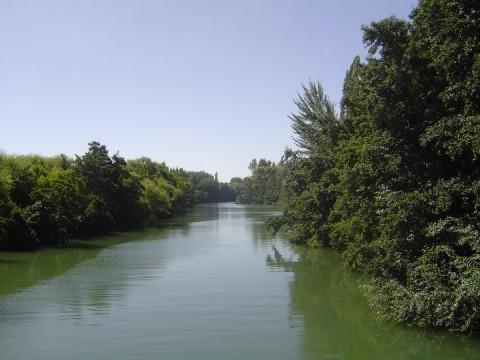 Islas en el Río Negro