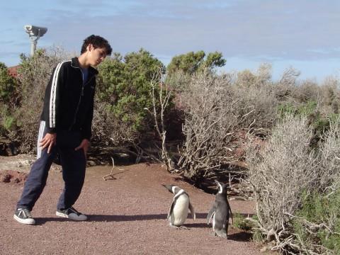 Imitando a los pingüinos - Punta Tombo - Patagonia Argentina