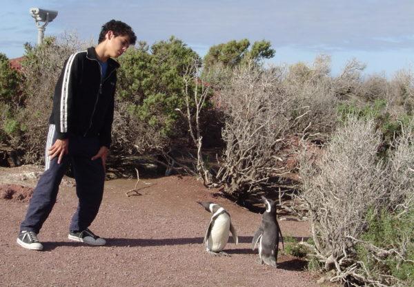 Mimicking the Penguins - Punta Tombo - Patagonia Argentina