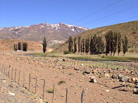 Senda para el paso de los chivos - Patagonia Argentina