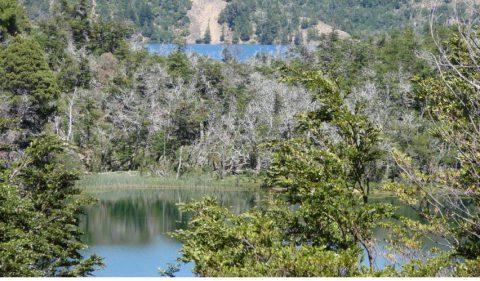 Lagunas Las Mellizas - Foto: villatraful.gov.ar