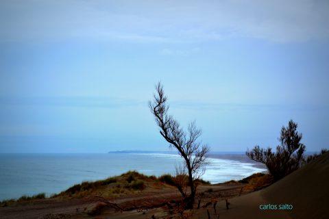 Bahia Creek - Patagonia