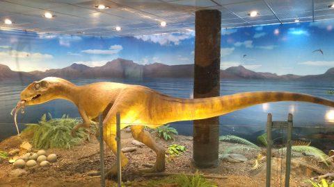Los dinosaurios invaden el aeropuerto de Trelew!